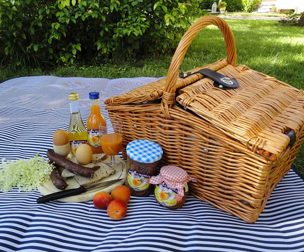 Picknick im Marillengarten